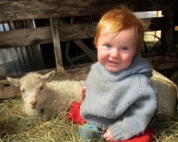 Waylon and lamb