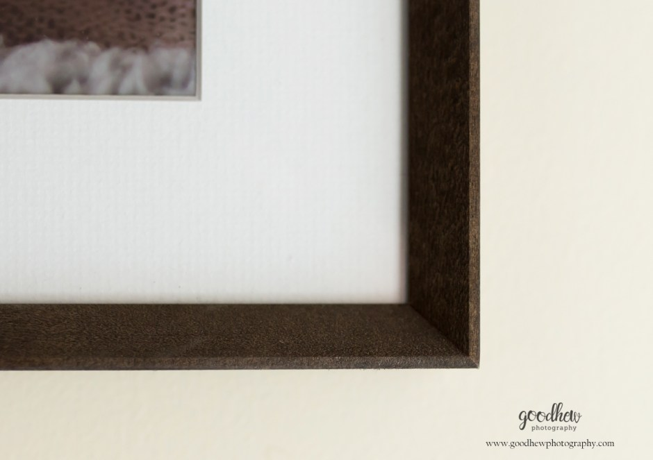 Jackson, Michigan frame corner - Goodhew Photography