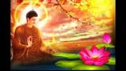 sri lanka poya day (30)