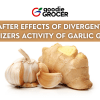 After Effect of Divergent Stabilizers Activity of Garlic Ginger
