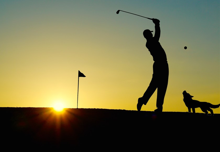 golf sunrise wolf