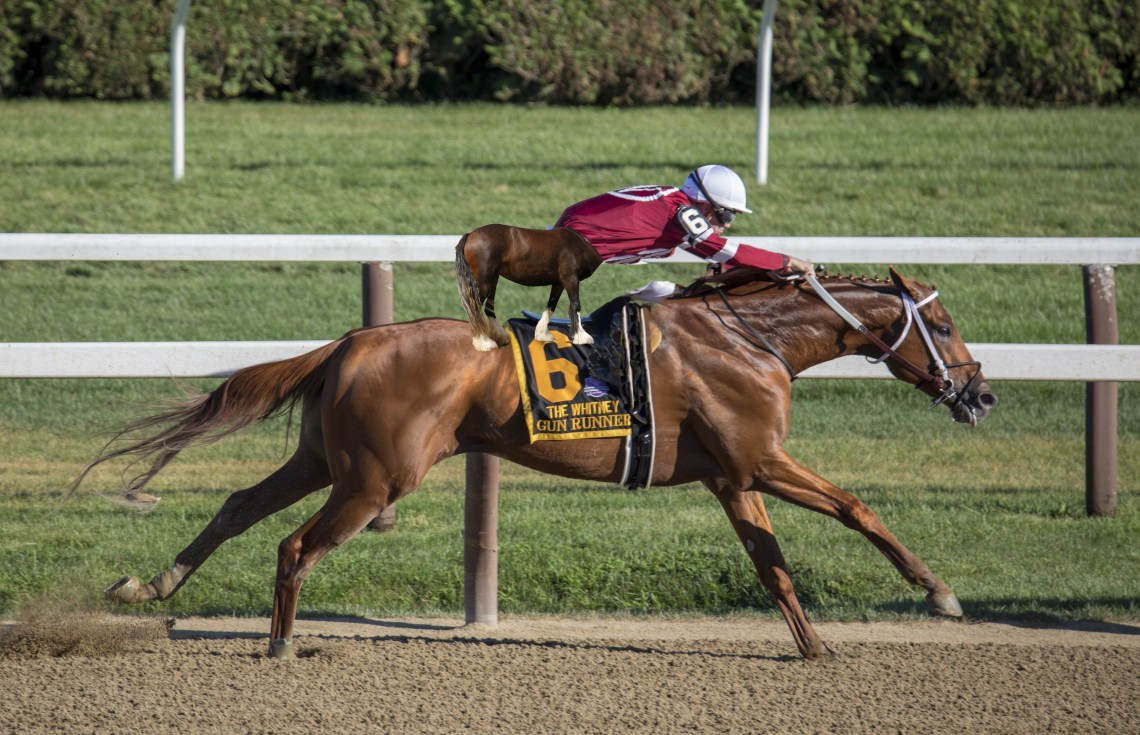 centaur jockey on horse