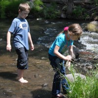Awesome Summer - Playing in the Creek