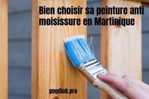comment choisir peinture anti moisissure martinique