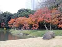小石川後楽園の秋の紅葉はいつが見頃か!アクセス方法は
