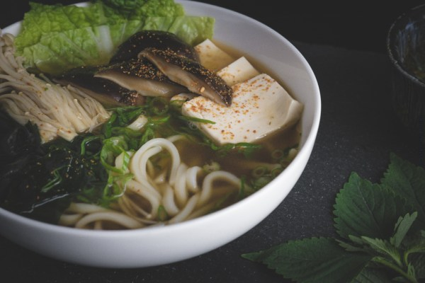 Japanese Udon Noodle in Broth