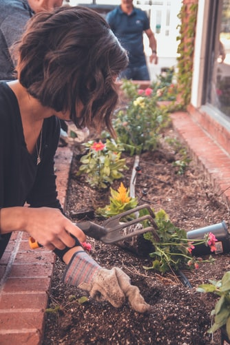 Eight Gardening Ideas for Spring