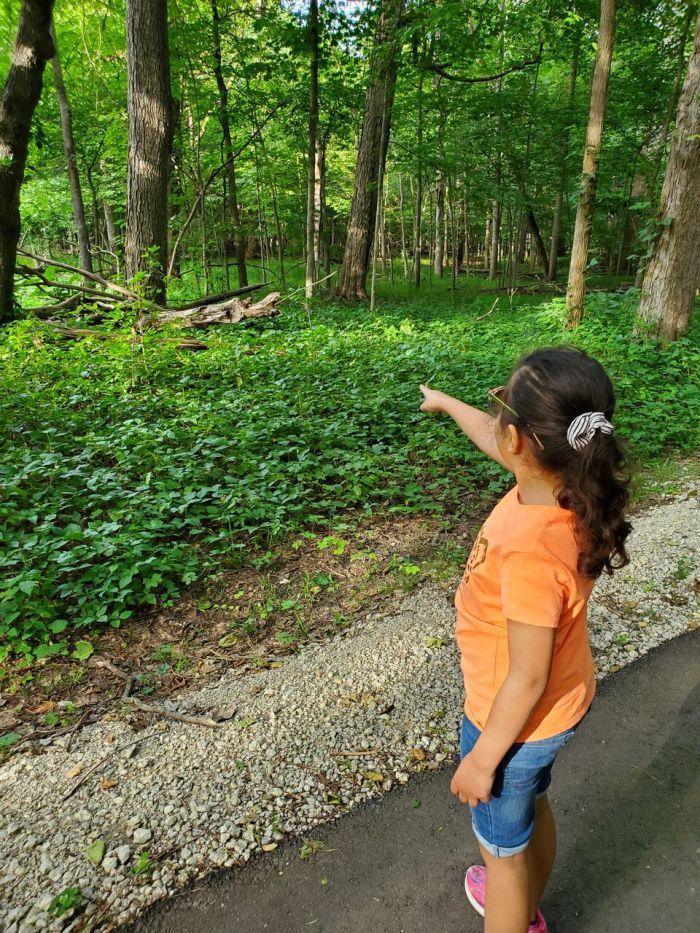 nature walk activities