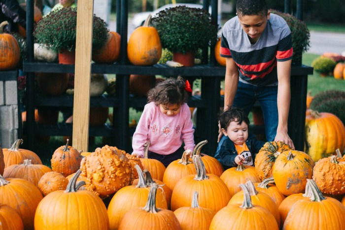 Family Fall Bucket List Featuring 28 Days of Fall Activities