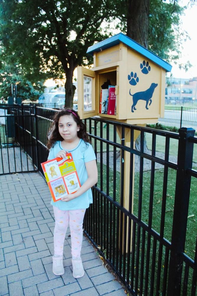Detroit Little Free Library
