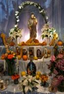 Saint Joseph's Day Groppo Family -11 copyright Kim Smith