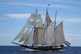 170622 Sail Boston fleet leaving Cape Ann for Halifax (3a)