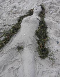 Love the seaweed!