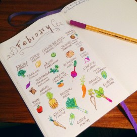 17-02-12-drawing-bullet-journal-february-fruits-and-vegs