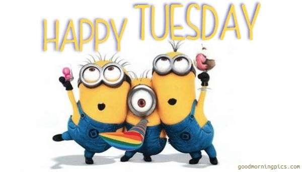 Image result for tuesday happy