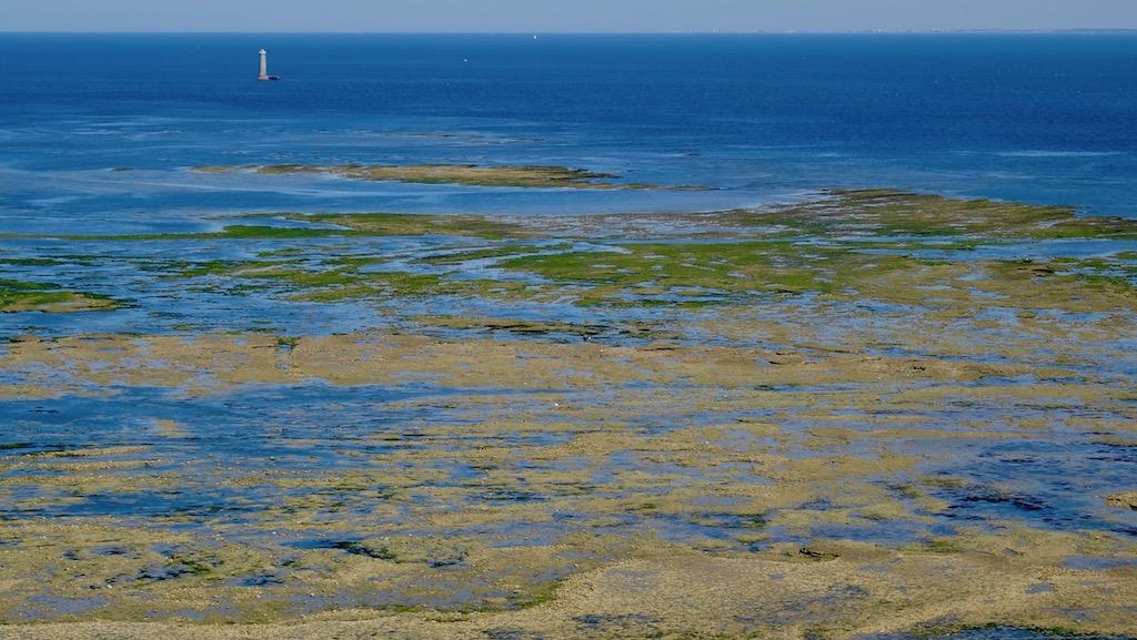 ile de ré marée basse