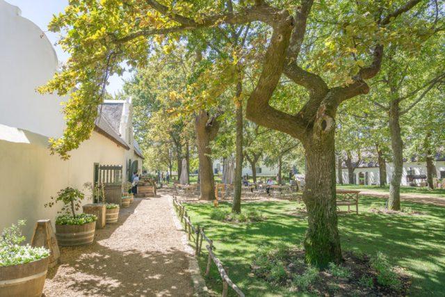 Kaapstad vakantie wijnmakerij