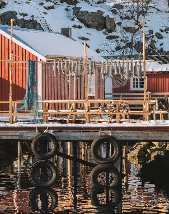 Kabeljauw Nusfjord