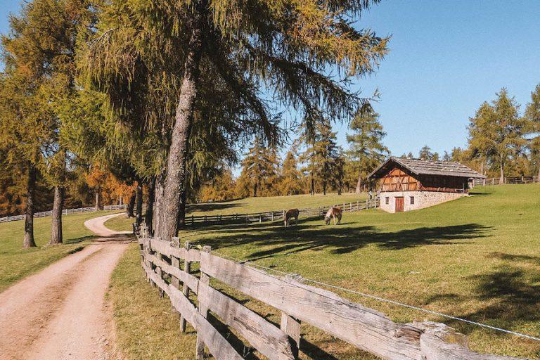 Jenesien Zuid-Tirol Legend Trail Hike
