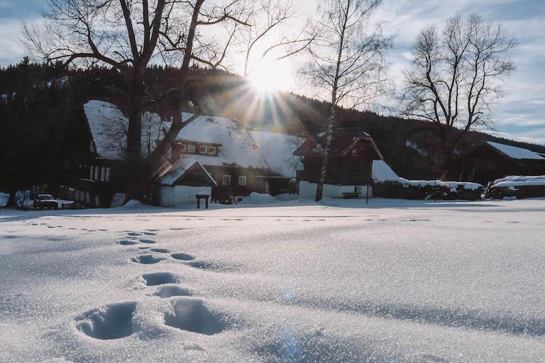 Winterwandeling in Ramsau am Dachstein