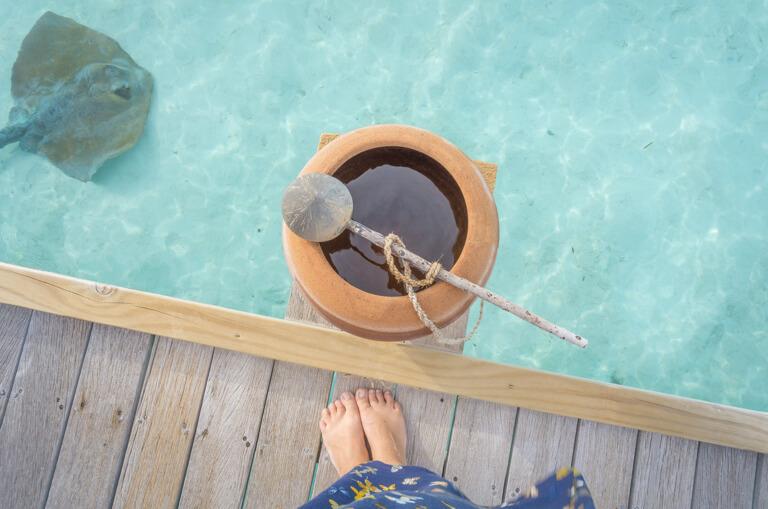 Maldiven eilanden lagune stralen