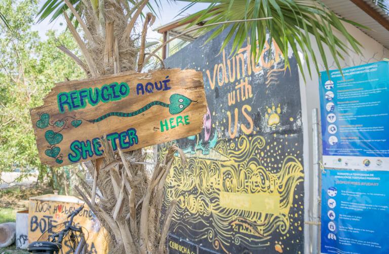 Refugio Holbox Animal Sanctuary Mexico