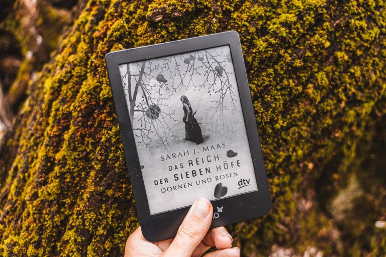 Recensie Het koninkrijk van de zeven boerderijen Sarah J Maas boek