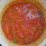 red pepper & tomato sauce with chilli