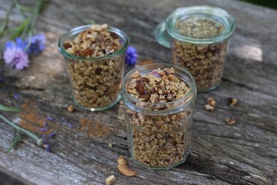 fig cluster granola - 1 (4)