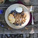fig and ginger cluster granola