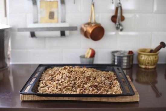 fig cluster granola - 1 (7)