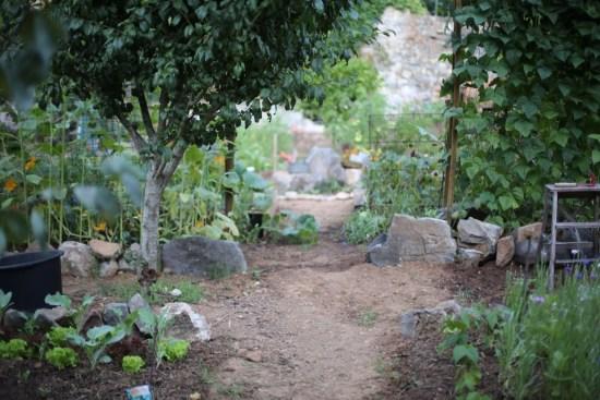 garden - 1 (1)