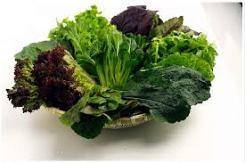 gnn green leafy veg.