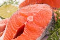 gnn salmon