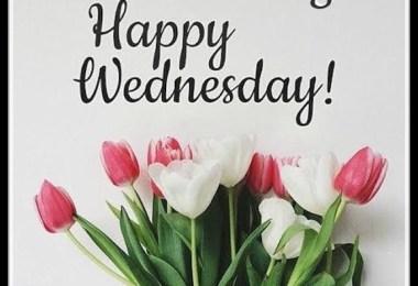shubh-bhudhwar-good-morning-with-god-ganesha-photo-happy-wednesday-photo-download-in-hd