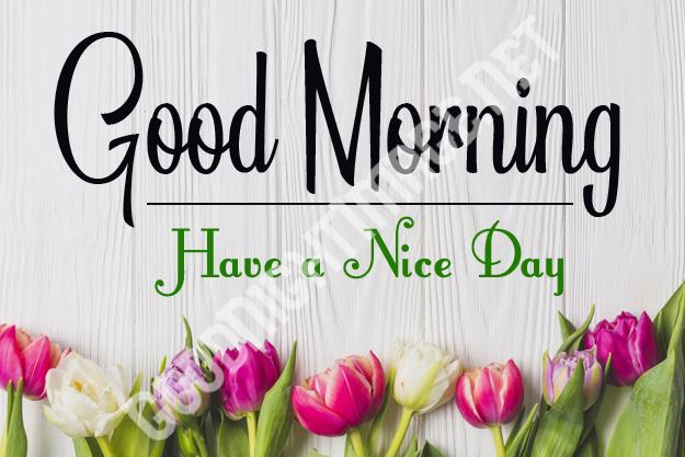 Good-Morning-Royal-Images-Download-for-Whatsapp-Facebook