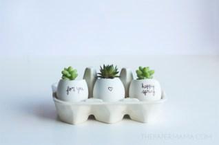 Egg carton? Oh, you mean succulent planter.