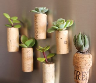No container is too tiny, especially not these wine corks!