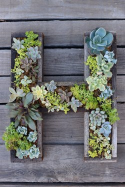 An S.F. local planter. Cut vintage wooden slats into your favorite letter, and then plant away.