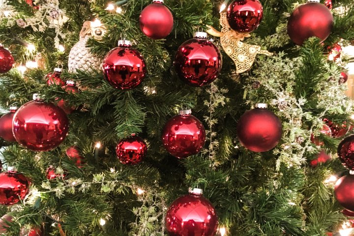 Closeup of Red Ball Ornaments on Christmas Tree