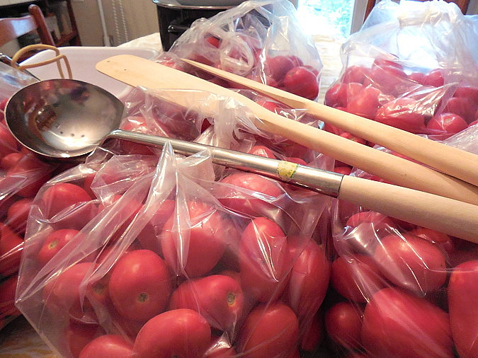 tomatoes in bags