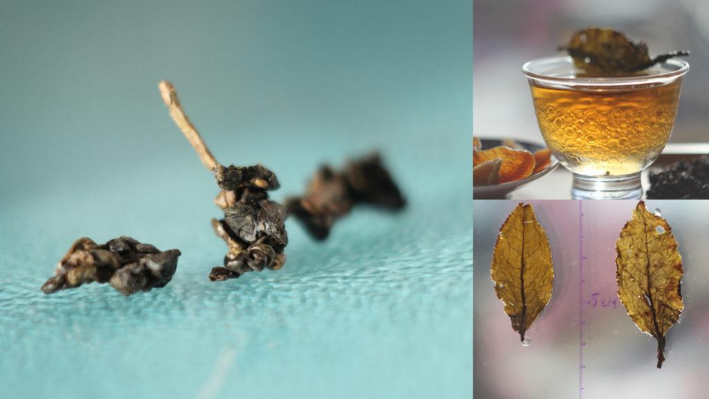 Чайное дерево на Тайване: разновидности и сорта. Te Гуаньинь и Те Гуаньинь.