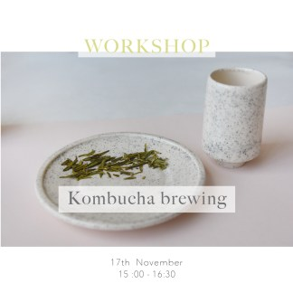 Kombucha brewing workshop