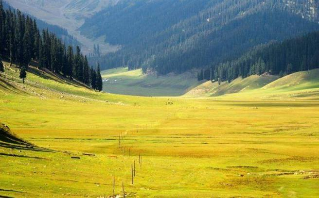 A meadow in Bangus Valley, one of the areas identified by the Jammu & Kashmir Forest Department as holding strong ecotourism potential. Source: Wikimedia / Wasiq 9320