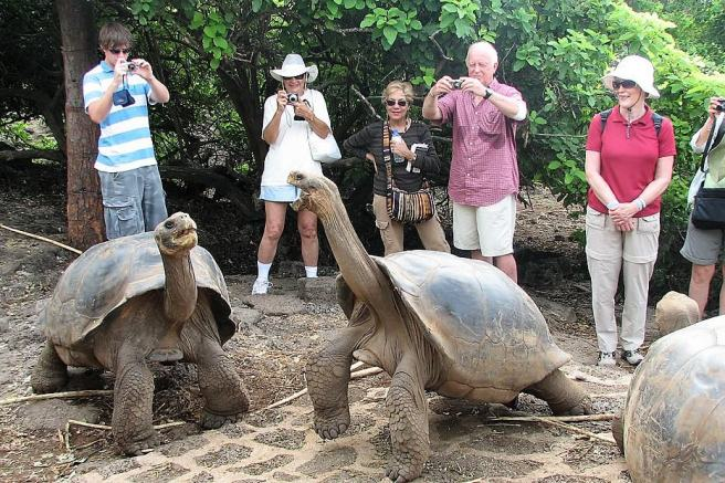 Galapagos tourism threatening the archipelago's native species