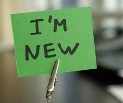 How She Manifested a New Job