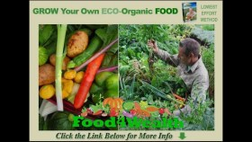 Discover How To Develop Organic Meals with this Breakthrough Approach
