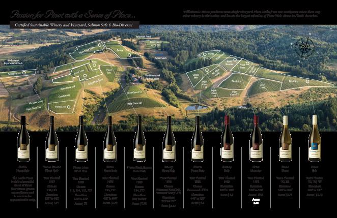 Willakenzie vineyard-map