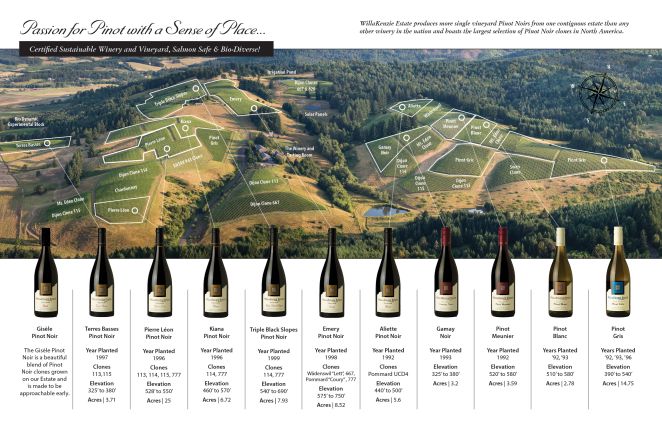 Willakenzie vineyard-map