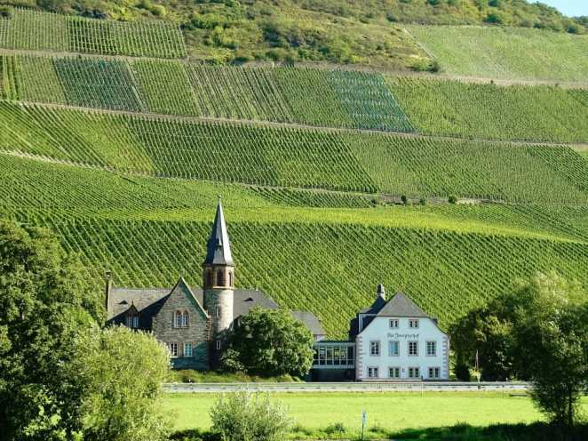 mosel-vineyards-wine-growing-area-wallpaper-preview